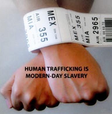 human-wrists1