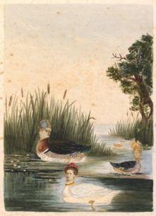 Kate Edith Gough Album Late-1870s