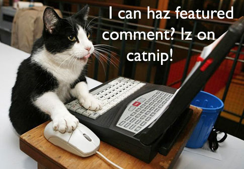 Cat at a computer, text: I can haz featured comment? Iz on catnip!